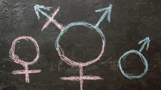 male, female and transgender symbol on chalkboard