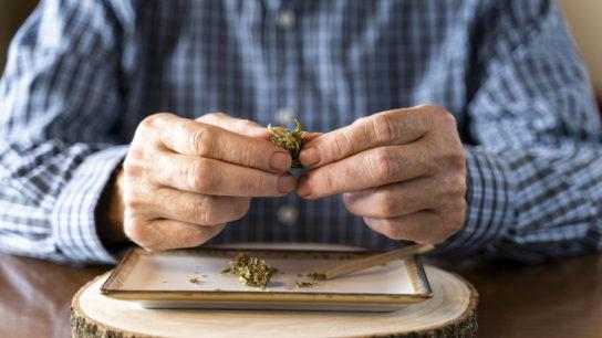 elderly mature man with marijuana cannabis